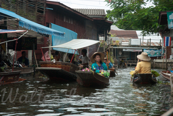 Floating market-September 01, 201430