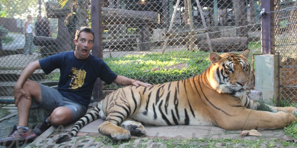 In Chiang Mai it's very famous the Tiger kingdom a place where it is possible see and touch the tigers. I don't go to the zoo. I consider the zoo […]